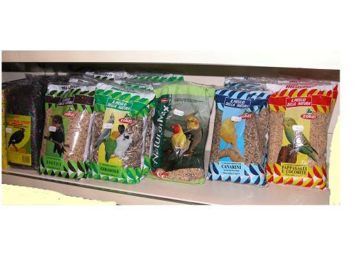 Semi per uccelli